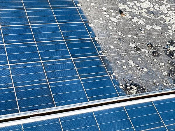 Siebe Gebäudereinigung OHG Photovoltaikreinigung Solarreinigung