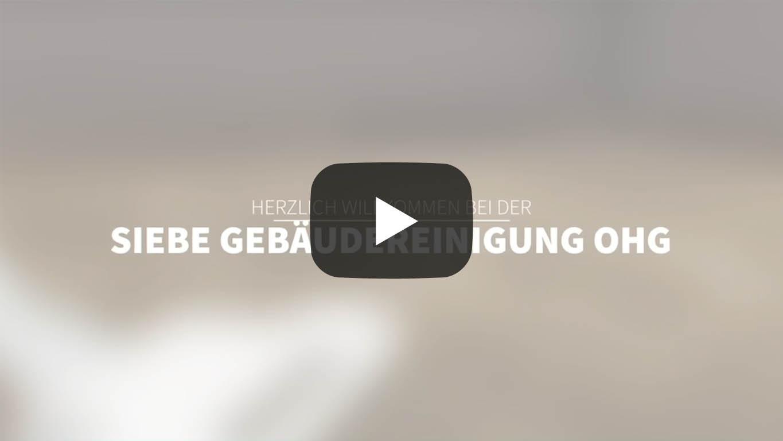 Außenanlagenreinigung Datteln Video