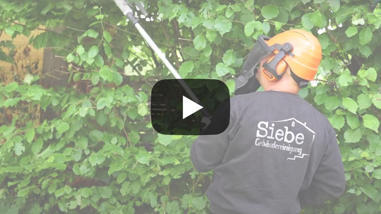 Video Außenanlagenreinigung-Pflege oberhausen