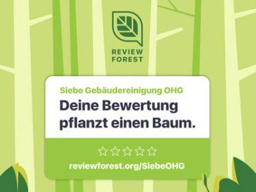 review-forest-Baumspende